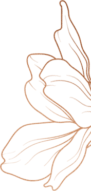 A large lotus on the right corner of the section. In the bronze gradient outline.